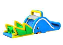 Dolphin juego inflable