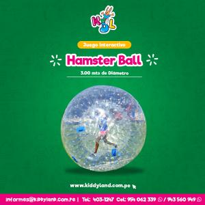 Hamster Ball Juego Interactivo Perú